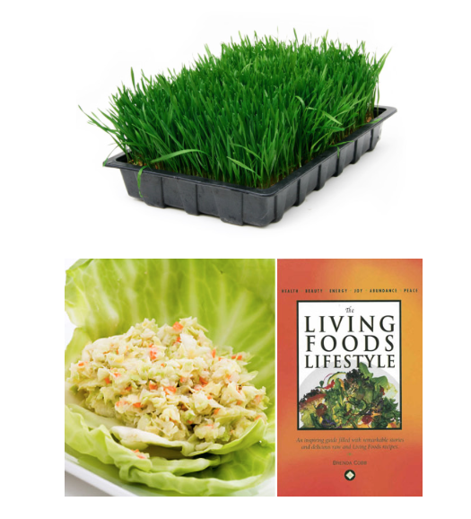 The Living Foods Institute