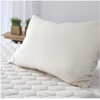 Kapok Organic Pillow