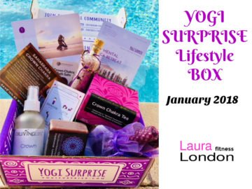 Yogi Surprise Box Review